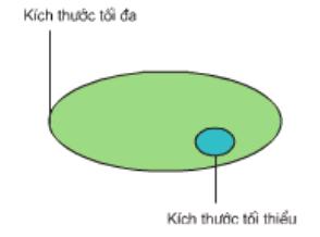 Sơ đồ mô tả giá trị kích thước tối thiểu và kích thước tối đa của quần thể