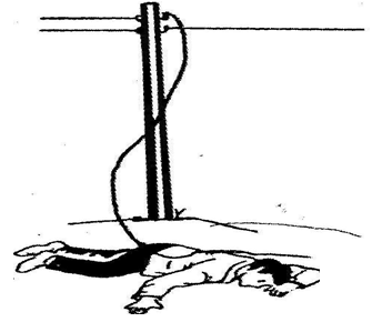 Nạn nhân bị dây điện đứt đè lên người