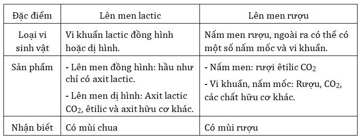 Sự khác nhau của lên men lactic và lên men rượu