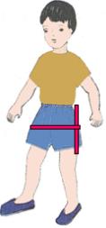 Cách đo quần đùi
