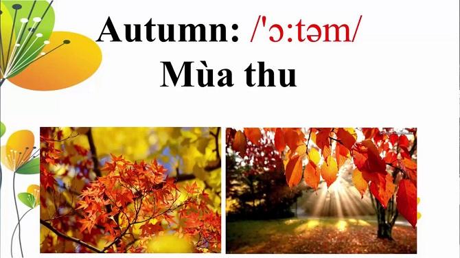 Autumn English Vocabulary