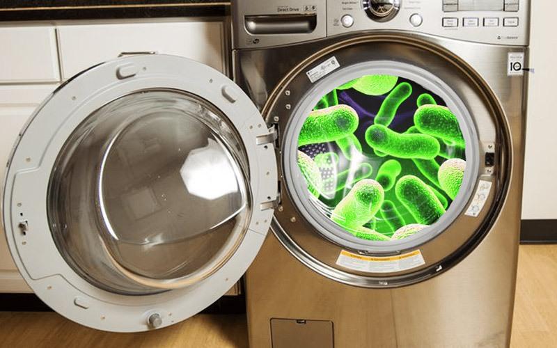 Máy giặt là nơi chứa rất nhiều vi khuẩn vì vậy bạn nên vệ sinh thường xuyên