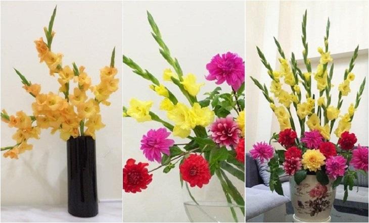 Mẫu cắm hoa lay ơn