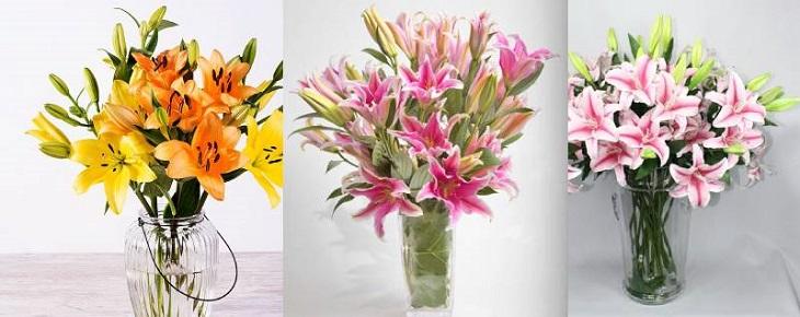 Mẫu cắm hoa ly