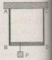 Hình VII SBT Vật Lý 10