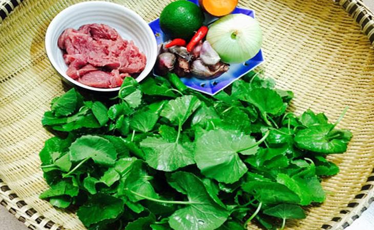 Nguyên liệu làm gỏi rau má trộn thịt bò
